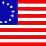 Bild (Ausschnitt): © Jack Wittbold - wikimedia.cannabis-us-flag