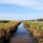 Wasserverschmutzung  Bild (Ausschnitt): © Marion Chi [CC BY-SA 2.0]  - flickr