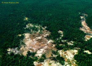 Luftaufnahme von Gold Abbau in Wald in Guyana