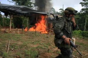 In der Nähe von Tumaco in Kolumbien wird ein Kokainlabor vernichtet